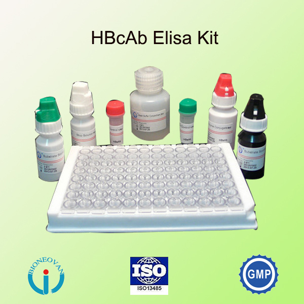 human papilloma virus elisa kit pancreatic cancer fever