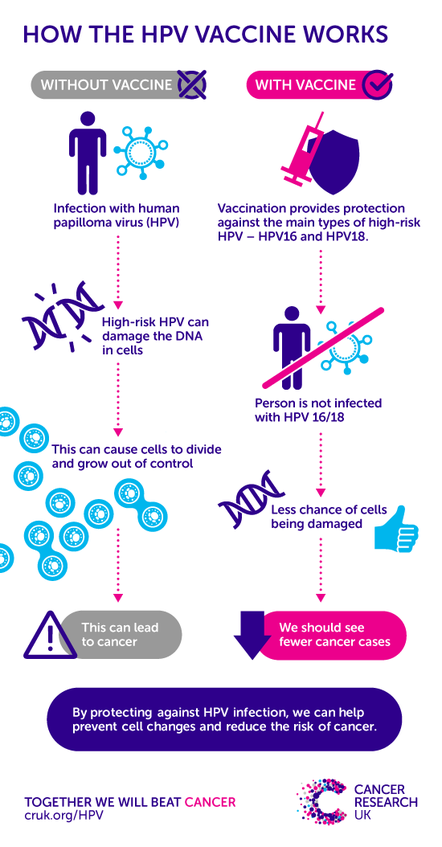 hpv research funding