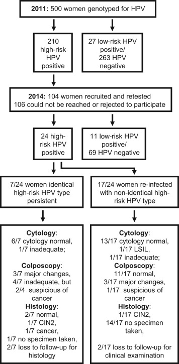 hpv high risk positive