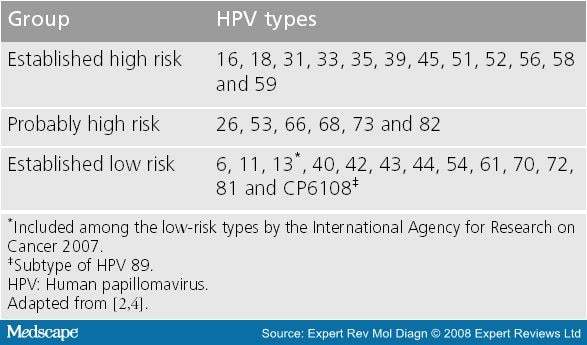 hpv high risk of