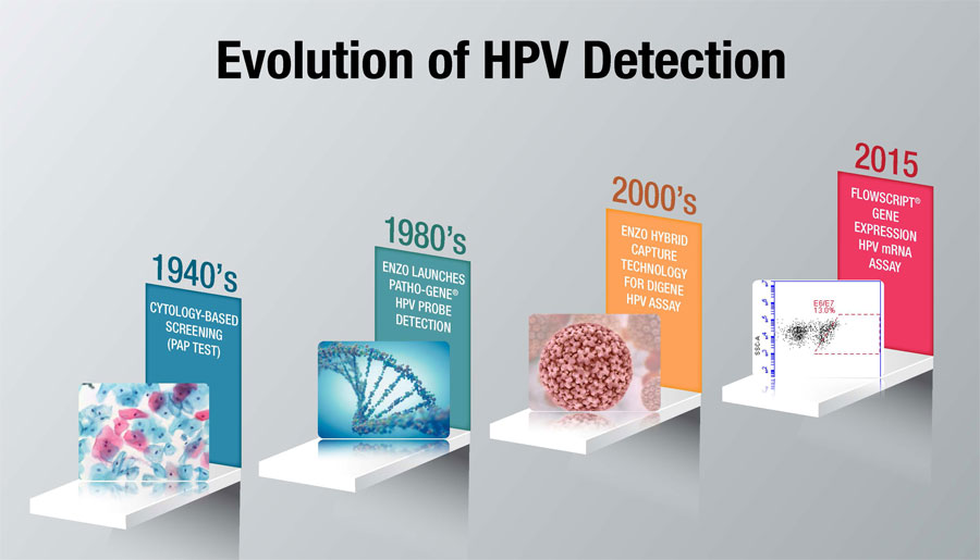 human papillomavirus detection