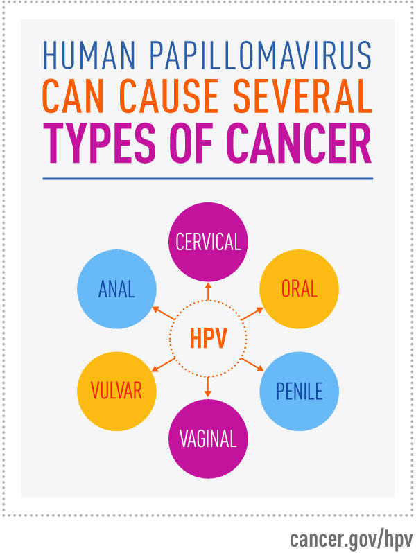 hpv and cancer percentage