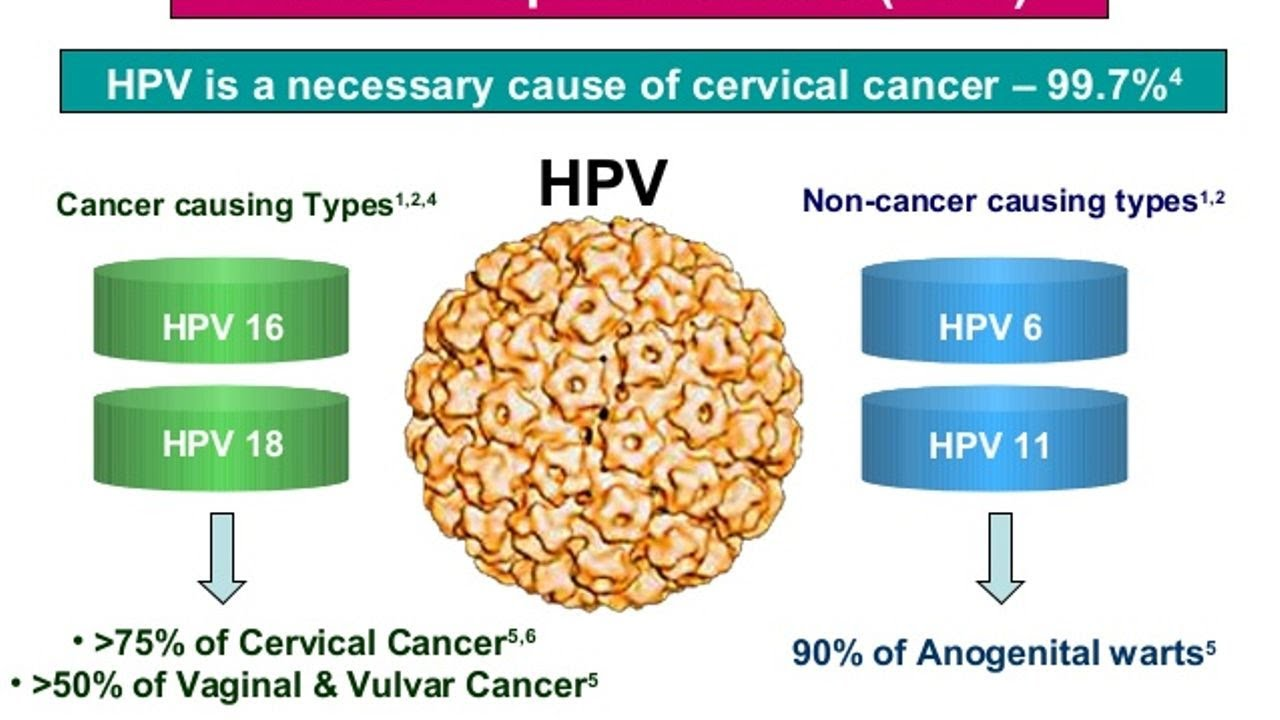 hpv or cervical cancer papilloma virus cure per luomo