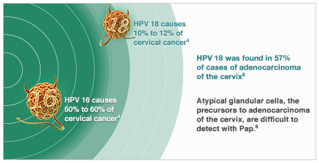 hpv 16 and 18 and cervical cancer oxiuros como eliminar