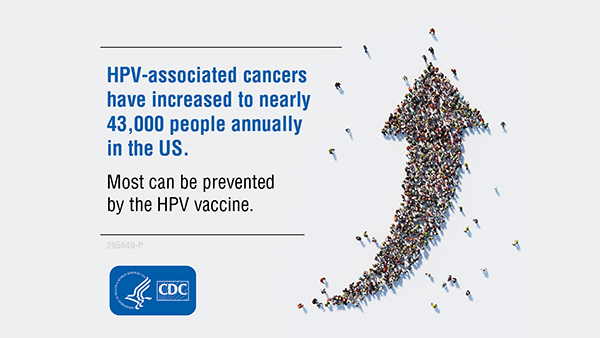 hpv and cancer percentage nikvorm catena