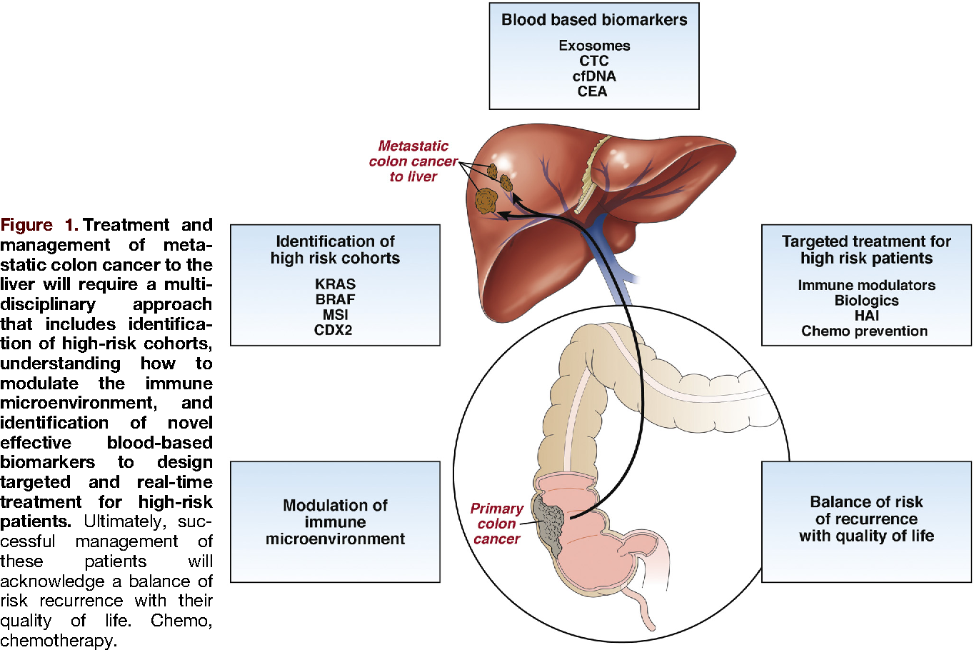 Liver Metastases: Incidence and Clinicopathological Data   Acta Medica Marisiensis