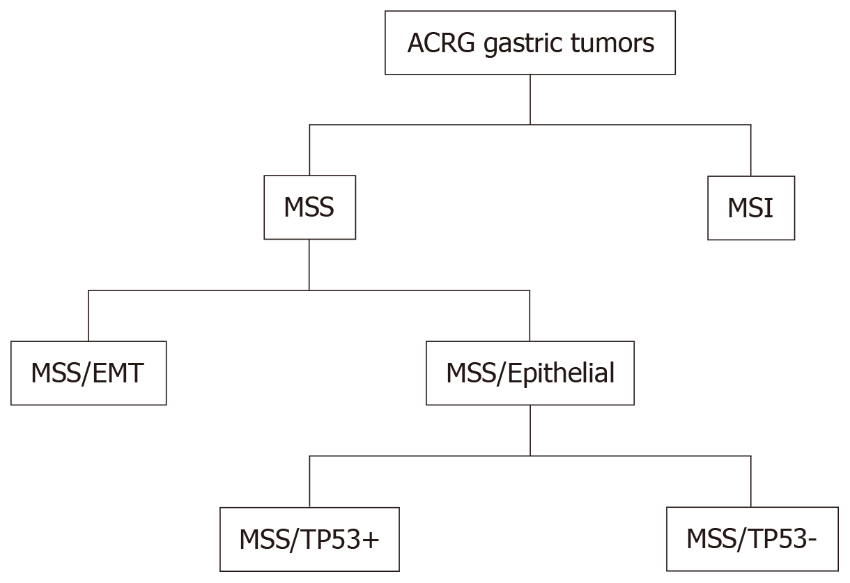 gastric cancer quality indicators hpv impfung junge manner